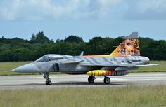 The sublime decoration of the Czech 211 Sqn Saab JAS 39 Gripen, at the NATO June 2017 Tiger Meet, at the French Marine Nationale Aeronavale base in Landivisiau, Bretagne ... don't get too excited by the Tigress!