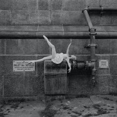 the beautiful ballerina project by Dane Shitagi