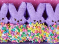 Decorated Peeps and Bunny Peeps  So simple and so cute, even for the big kids in the house :)