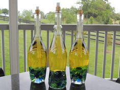 When I get some clear wine bottles, I'm going to make these tiki torches to keep the bugs away from the back patio.