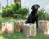 stump dog bowl holder
