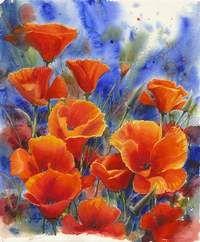 Orange Poppies by Jennifer Bowman