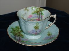 Aynsley Tree Scene Cup & Saucer