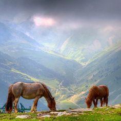 Vall de Nuria (al cor)