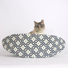 Our Cat Canoe® cat bed is a modern pet bed, designed for cats who live todays relaxed lifestyle. Weve used a geometric Riley Blake fabric in white, navy and blues for the shell, and a seafoam green quilting blender for the lining. These fabrics are 100% cotton.  We recommend this bed for cats or dogs to about 18 pounds. Unlike the shoe box your cat was living in last week, the Cat Canoe® is made of entirely flexible materials, allowing larger cats total access. They simply squeeze, flatten…