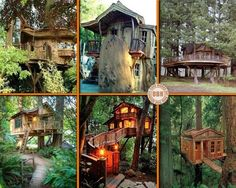 We're never too old to have a tree house! Which one of these would you like in your yard? If none of them are perfect, we have heaps more to view on our main site. http://theownerbuildernetwork.co/quiet-spaces/tree-houses/ Don't forget to share your thoughts in the comments section.