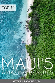Here is the guide for best beaches in Maui, with information and insights on where to go, what to see and more! Best Beaches In Maui, Maui Beach, Beaches In The World, Beach Fun, Beach Trip, Maui Hawaii, Oahu, Types Of Photography, Aerial Photography