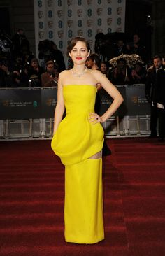 Marion Cotillard in Dior Haute Couture at 2013 BAFTA Awards