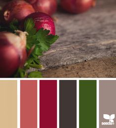 Familiar, safe tones perfect for a high Legacy value. #VoiceValues | produced hues via Design-Seeds | commentary via The Voice Bureau at AbbyKerr.com