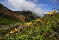 Daisetsuzan National Park, Hokkaido, Japan
