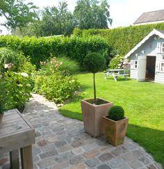 Ein kleiner Blick in unseren Garten