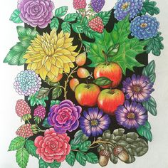 #adultcolouring #coloriage #coloringbook #prismacolor #blomstermandala
