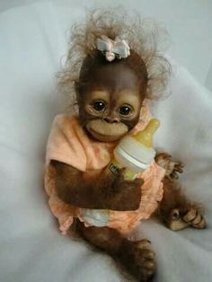 Cute baby orangutan dressed in orange and clasping her bottle. Cute Baby Animals, Animals And Pets, Funny Animals, Baby Orangutan, Cute Monkey, Monkey Doll, Monkey Art, Tier Fotos, Cute Animal Pictures