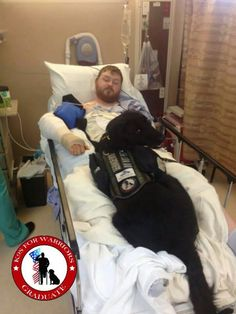 Kima is taking good care of him. K9s For Warriors is dedicated to providing service canines to soldiers suffering from post-traumatic stress and/or traumatic brain injury as a result of military service post 9/11. Their goal is to give a new leash on life to rescue dogs and military heroes, empowering warriors to return to civilian life with dignity and independence. http://www.k9sforwarriors.org