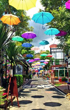 Wander around on your next adventure. You might just stumble down the umbrella alley of Chiang Mai in Thailand.