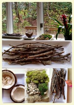 Reggio Emilia inspired Spring nature table. Featured by Special Learning House. www.speciallearninghouse.com.