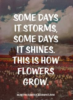 Some days it storms, some days it shines. This is how flowers grow.