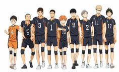 Karasuno Team! haikyuu! #creditstofbpage#haikyuu!