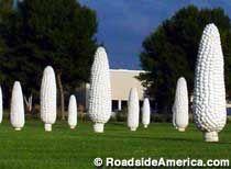 Field Of Giant Corn Ears, Dublin, Ohio