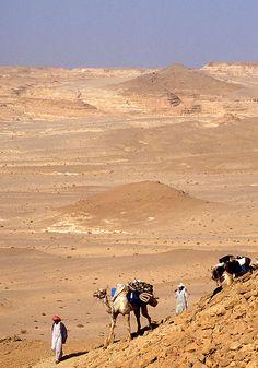 Sinai Desert, Egypt, 1998