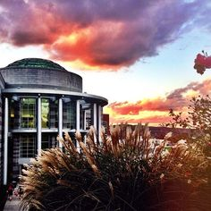 my school is prettier than your school My Campus, I School, Eye Candy, College, Clouds, Sunset, Pretty, Photography, Outdoor