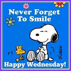 Wednesday Morning Quotes, Wednesday Memes, Good Wednesday, Morning Memes, Snoopy Love, Charlie Brown And Snoopy, Snoopy And Woodstock, Morning Hugs, Good Morning
