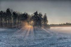 Dagens promenad var i Vrinneviskogen i Norrköping. Dimma hade lagt sig i det kalla landskapet och tillsammans med solen blev det fantastiskt vackert skådespel. Många promenerande människor stod med sina telefoner framme i kylan.  #landskapsfoto #ig_sweden #zoranfoto #norrköping #vrinneviskogen #dimma #frost #sol #skog #vinter #snö #breathtaking #landscapelovers #worldplaces #sweden #amazingview #beautifulplaces #ourplanetdaily #östergötland #hejöstergötland