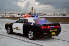 Starring: Dodge Challenger (by Infinity & Beyond Photography: Kev Cook) Broward County Sheriff, Led Warning Lights, Police Cars, Police Vehicles, Police Station, State Police, Dodge Challenger, Law Enforcement, Fuzz