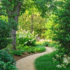 Gravel Garden Paths Design Ideas, Pictures, Remodel, and Decor