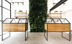 Newly installed in the storefront of an 1889 historic-landmarked building, along a quiet stretch of cobblestone streets in the Old Town Chinatown district of Portland, Oregon, you will find Serra, the most sophisticated cannabis dispensary in the city,...