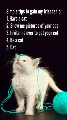 #quotes #catlovers #cats #pets