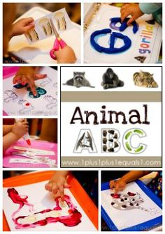 Animal ABCs from @{1plus1plus1} Carisa #ece #totschool #preschool
