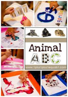 Animal ABCs from @{1plus1plus1} Carisa #ece #totschool #preschool