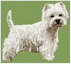 Stock of embroidery designs West Highland White, West Highland Terrier, White Terrier, Color Blending, Westies, Cat Breeds, Machine Embroidery Designs, Animals And Pets, Dog Cat