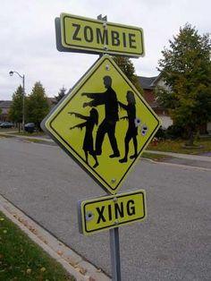 Survival Zombie Apocalypse:  #Zombie Crossing.
