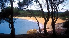 Platja del Castell - One of / or THE only unspoiled beach of Catalunia! #unspoiled #beach #costabrava