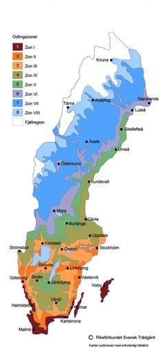 Planting zones in Sweden Zonkarta Sverige. Gardening Zones, Gardening Tips, Gardening Magazines, Modern Garden Design, Outdoor Areas, Dream Garden, Garden Inspiration, Garden Ideas, Beautiful Gardens