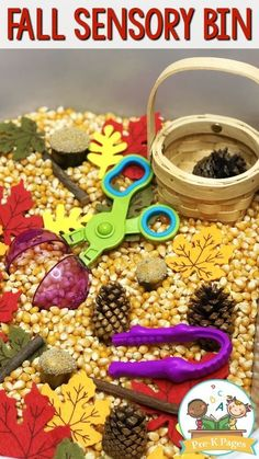 Fall Sensory Bin for Preschool. Super quick and easy to set up, this sensory bin is perfect for fall or autumn in your or classroom! preschool Fall Sensory Bin for Preschool Sensory Play Fall Preschool Activities, Preschool Learning, In Kindergarten, Preschool Crafts, Toddler Activities, Fall Crafts For Preschoolers, Preschool Fall Crafts, September Preschool Themes, Toddler Fun