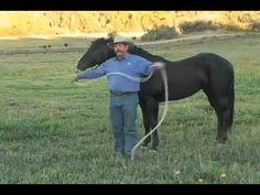 Parelli Horse Training - Pat Parelli shows how to lead a horse