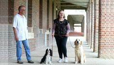 #Canoterapia: usan perros para tratar a pacientes mentales - TN - Todo Noticias: TN - Todo Noticias Canoterapia: usan perros para tratar a…
