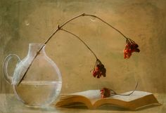 A book by Delphine. D on 500px