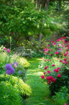 Massifs de fleurs vivaces dans le jardin / mixed border