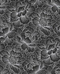 Graham & Brown  Superfresco Vliestapete Poise 30-431 Blumen schwarz silber