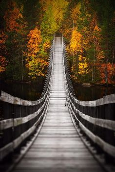 Bridge into Autumn