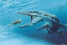 Tylosaurus Attacking Primitive Ray - Todd Marshall