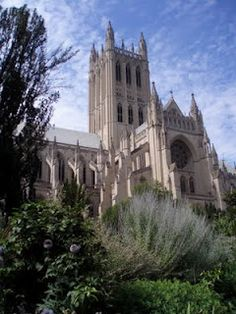 Washington National Cathedral.  Honestly, one of the greatest sites in all of D.C.  I STRONGLY recommend the Gargoyle Tour.  And to think that you believed in separation of church and state!  ;)  http://www.nationalcathedral.org/