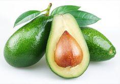 Buah Alpukat (Avocado)