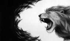 lion roar 2
