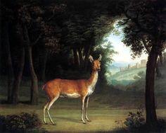 Работы швейцарского художника Jacques-Laurent Agasse (145 работ)