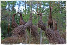 Birds made of branches